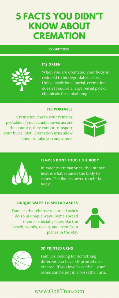 Cremation Facts Infographic